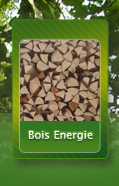 Images/template/menu/menu_energie_over.png
